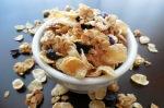 Crunchy Granola2